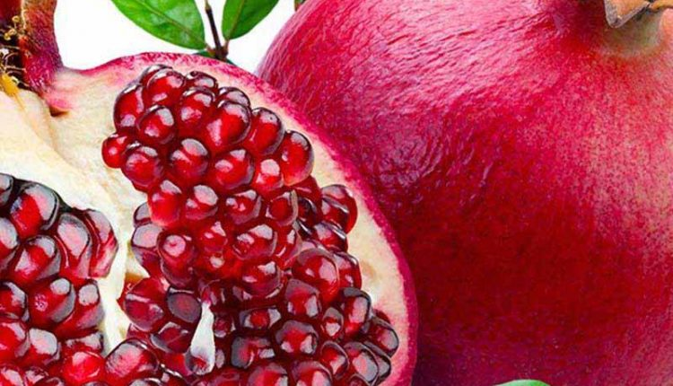 growing-pomegranate-trees-2